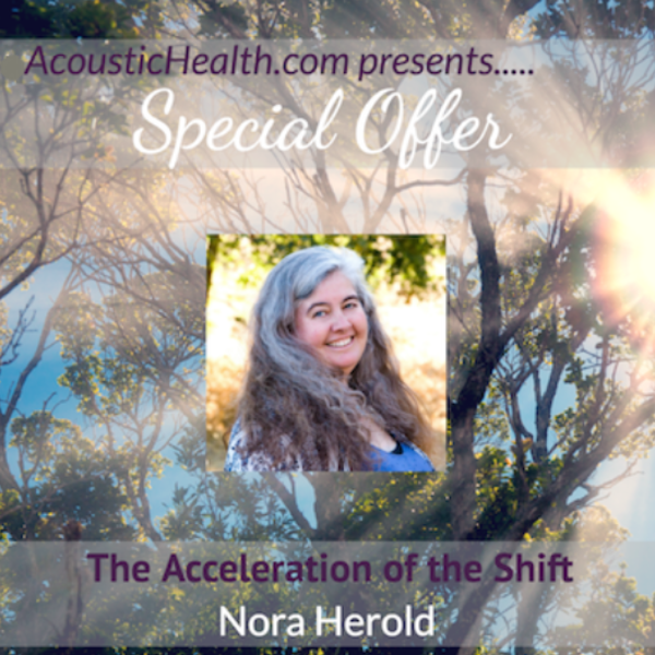 Nora-Herold-The-Acceleration