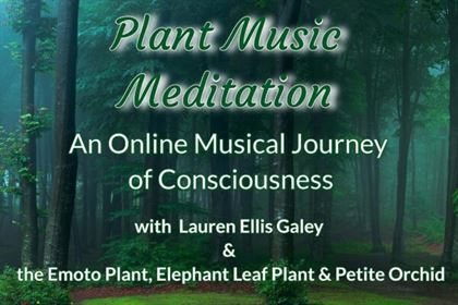 Plant Music Remedy (21)